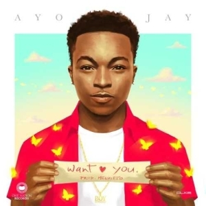Ayo Jay - Want You (Prod. By Melvitto)